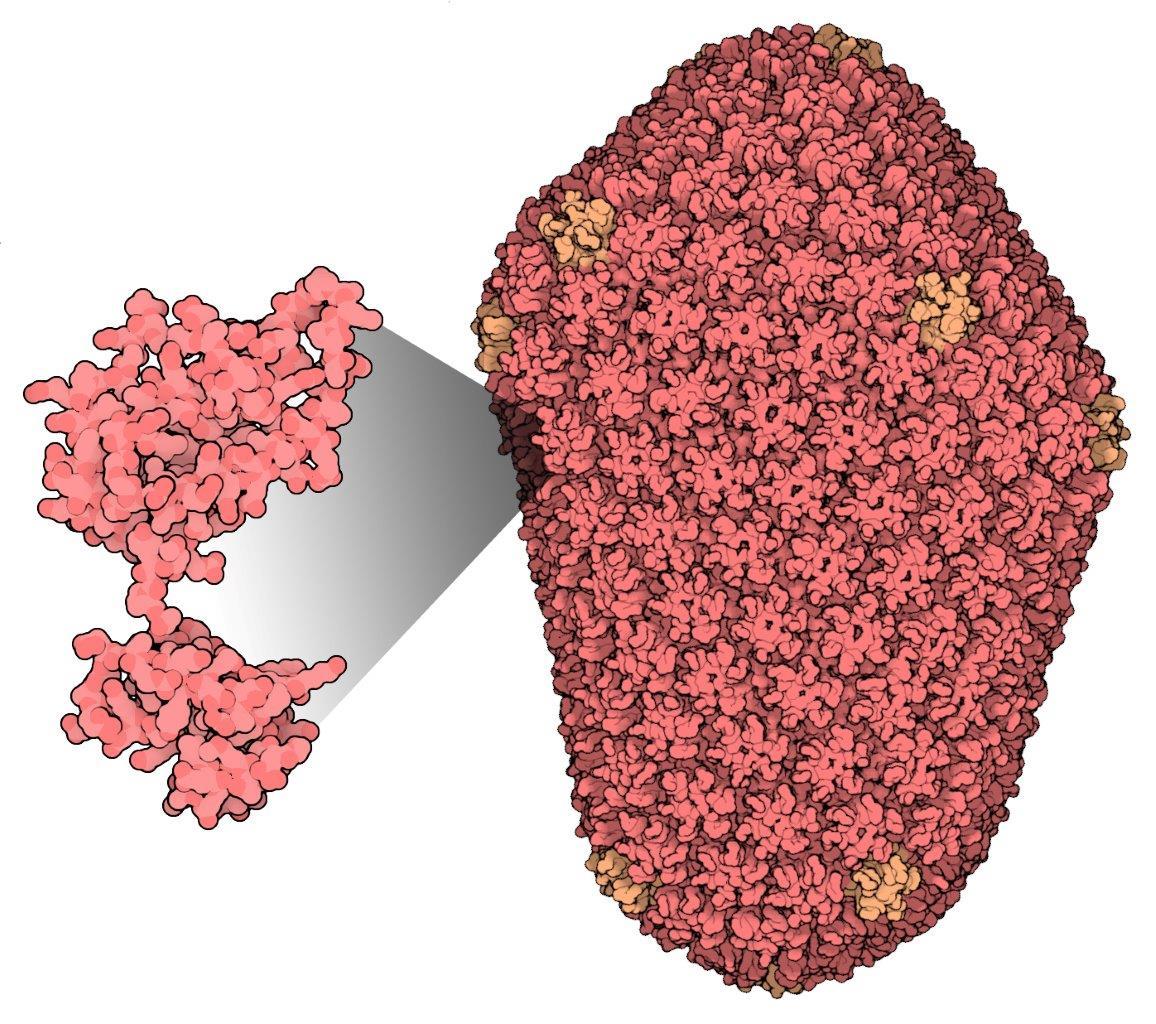 SDSC Research Awarded $1.4 Million NIH Structural Bioinformatics Grant